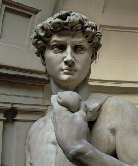 David, head of sculpture by Michelangelo Buonarroti (1475-1564)