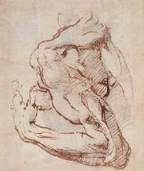 Study of an Arm Inv.1859/5/14/819 (W.49)