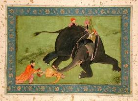 Attendants rescue a fallen man from an enraged elephant, from the Large Clive Album