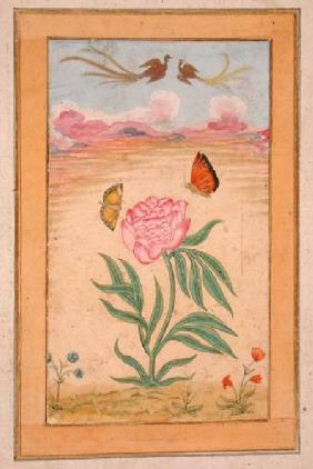 Flowering plants with birds of paradise and butterflies, from the Small Clive Album