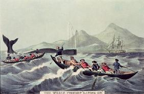 The Whale Fishery 'Laying on', 1852 (litho)