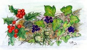 Log of Ivy, Holly and Hazelnuts
