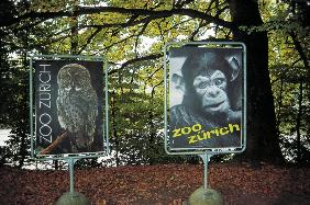 Animal signboards (photo)