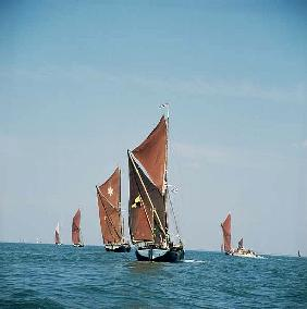 Thames Barge Race