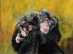 Chimpanzees (acrylic on canvas)