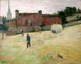 Haymaking in Brittany