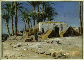 Bedouin Camp in Cairo