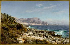 Coast near Monte Carlo