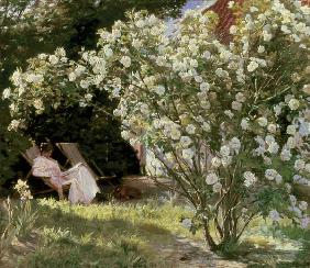 Roses, or The Artist's Wife in the Garden at Skagen
