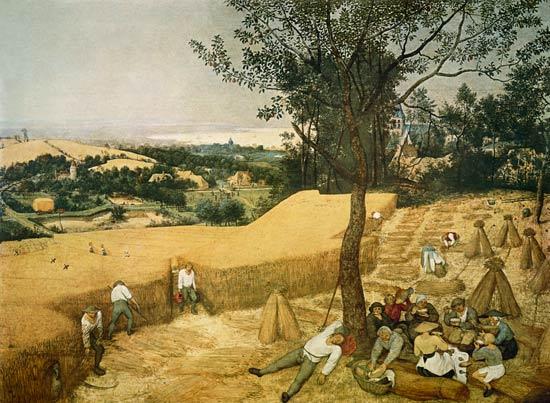 Pieter Brueghel l'Ancien - Cycle des images mensuelles - la récolte de grain (mois de juillet)