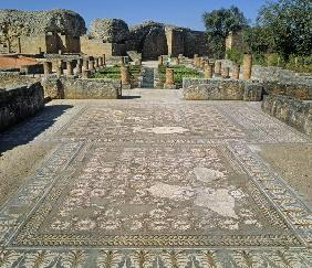 View of the ruins and a mosaic floor (photo)
