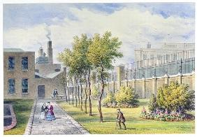 Garden of St. Thomas''s Hospital, Southwark, London