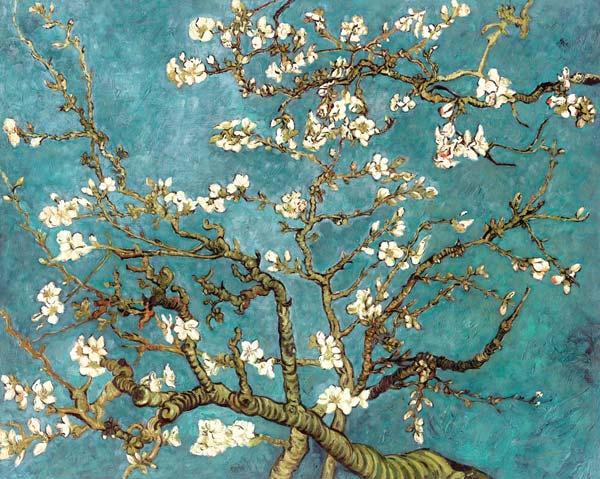 Amandier En Fleurs Copie Vincent Van Gogh En Reproduction