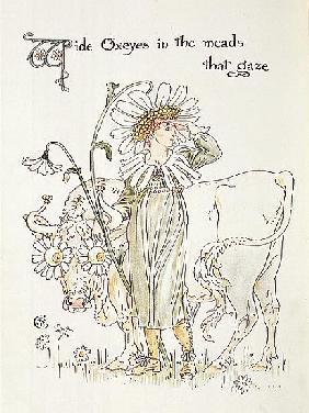''Wild Oxeyes in Meads that Gaze'', illustration to ''Flora''s Feast, A Masque of Flowers''