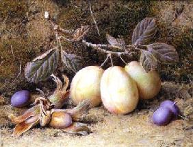 Still Life with plums and nuts