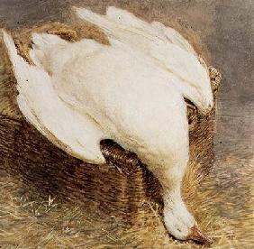 Still Life of a Dead Goose with a Basket