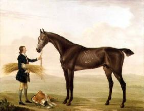 A Dapple Grey Stallion held by a Groom