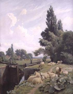 Landscape with a Canal Lock and a Flock of Sheep